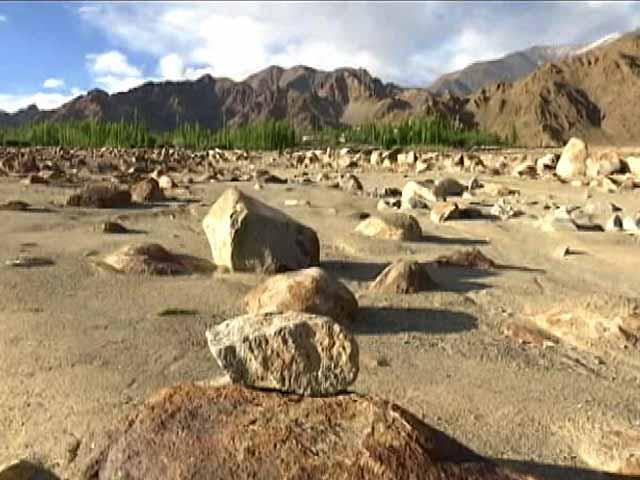 Video : In Ladakh,  Art On The Rocks