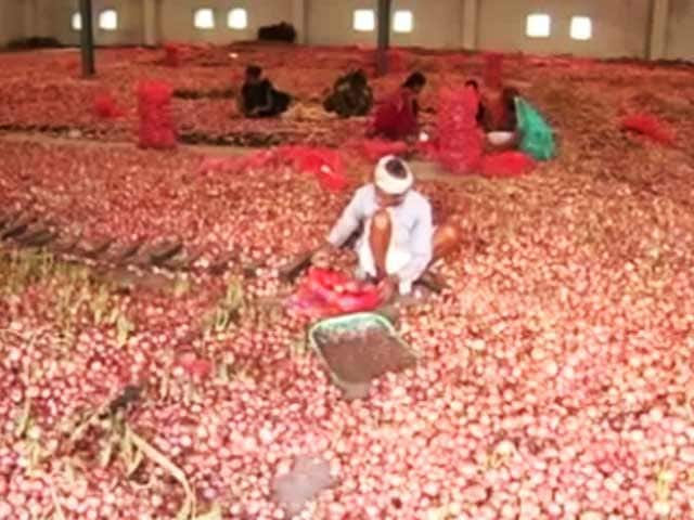 Video : 7 Lakh Quintal Onion Rot In Madhya Pradesh, Rs. 6.7 Crore Spent On Disposal