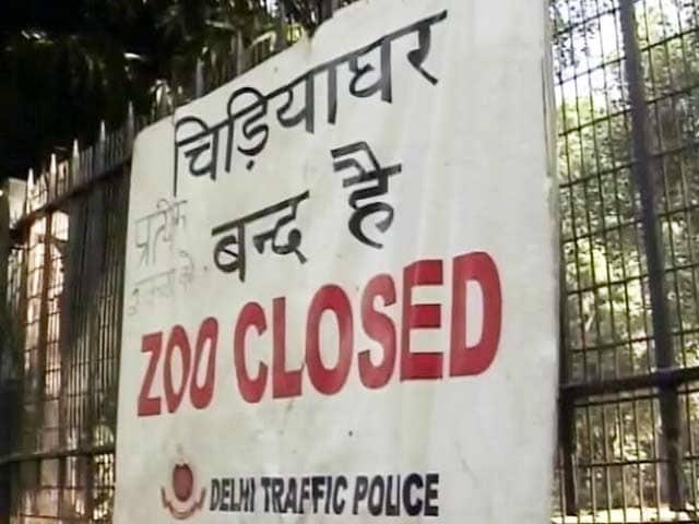 Video : बर्ड फ्लू के खौफ के चलते दिल्ली का चिड़ियाघर बंद किया गया