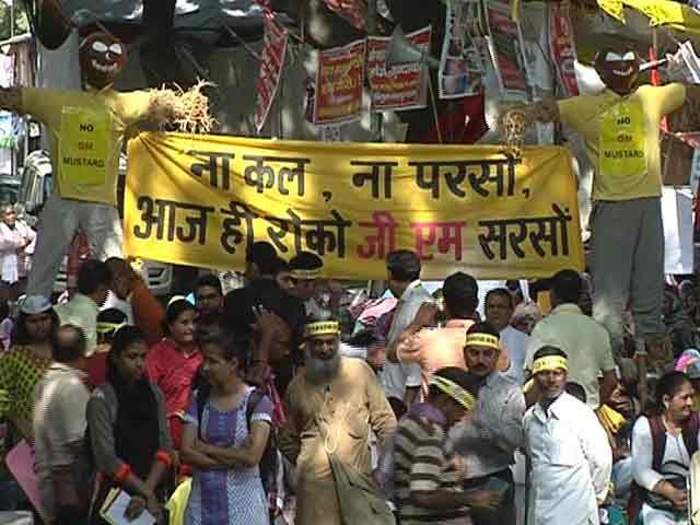 Video : जीएम सरसों पर किसानों को मिला विपक्षी दलों का साथ