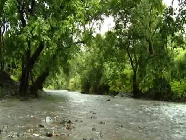 Video : Can Mumbai Save Its Dahisar River?