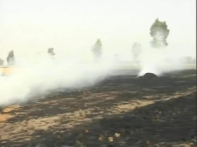 Video : Acres Of Field Continue To Burn In Mukhtsar: Ground Report On Punjab's Crop Fires