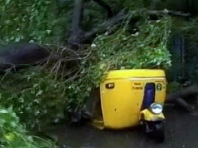 Video : नेशनल रिपोर्टर : 'वरदा' तूफान से चार लोगों की मौत