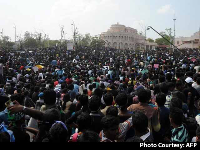 Video : Tamil Nadu To Allow Jallikattu By Using Executive Order