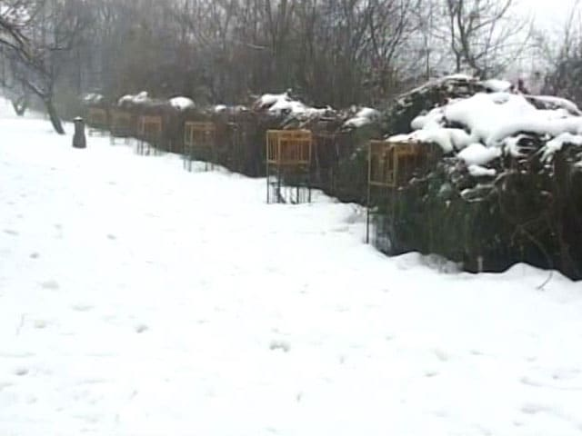Video : Avalanche: Number Of Deaths In Jammu And Kashmir's Gurez Rise To 15