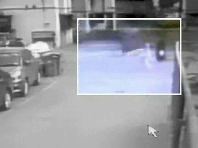 Video : आवारा कुत्तों के हमले में घायल हुईं अभिनेत्री, CCTV में कैद हुई घटना