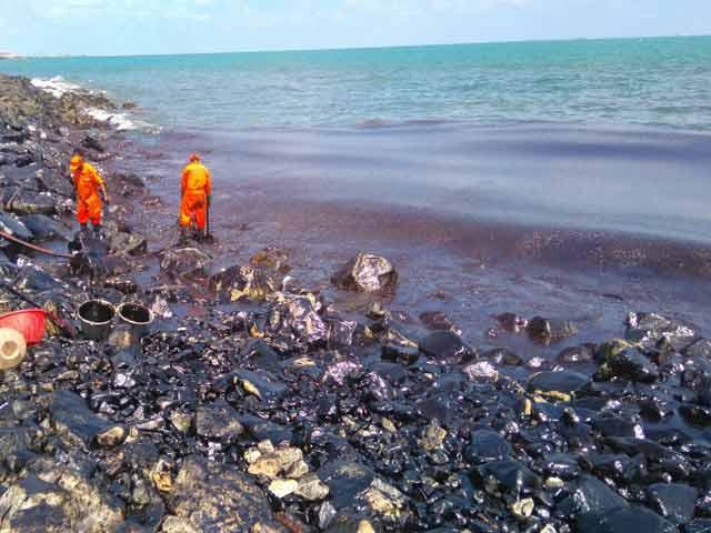 Video : Oil Spill Near Chennai Blackens Beaches, Fishing Community Affected