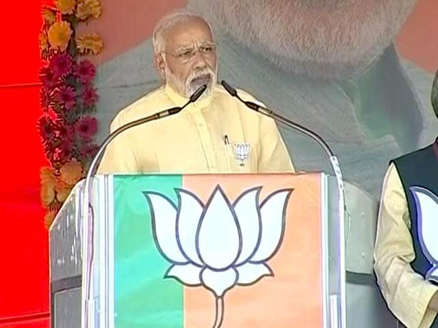 Video : 3 Days After 'Donkeys Of Gujarat' Insult, PM Modi Responds