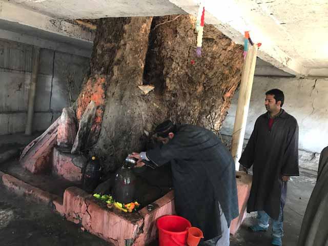 Video : Kashmiri Muslims In Bandipore Celebrate Shivratri, Want Pandits To Return