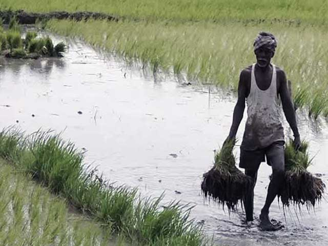 Video : NITI Aayog Looks To Double Farmer Incomes By 2022, Rules Out Agriculture Tax