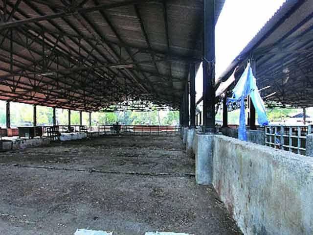 Video : यूपी में अवैध बूचड़खानों पर सख़्ती का असर दिल्ली तक