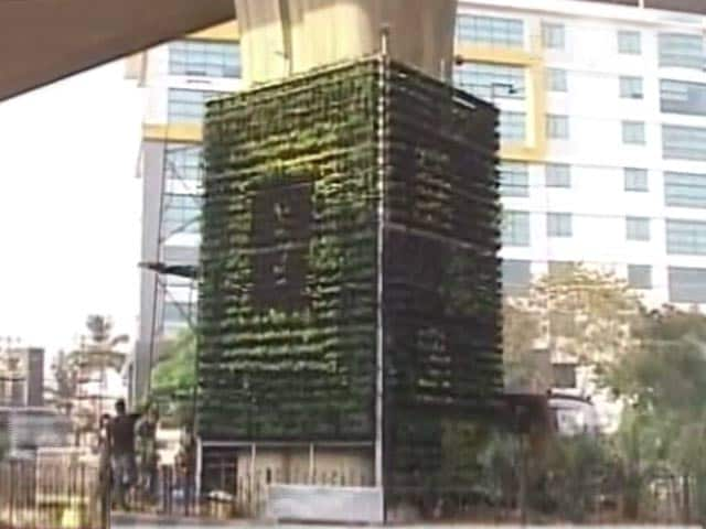 Video : Bengaluru To Reclaim Its Garden City Tag