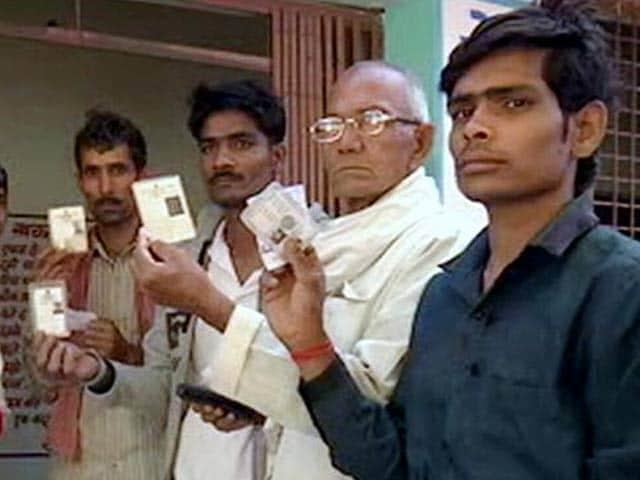 Video : मध्य प्रदेश के भिंड और बांधवगढ़ में उपचुनाव के लिए मतदान जारी