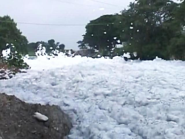 Video : White Alert At Bengaluru Lake Again, Froth Flies After Rains In Bellandur
