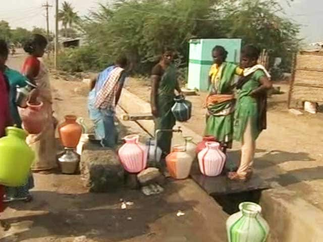 Video : Worries Deepen For Rural Madurai As River Vaigai Shrinks