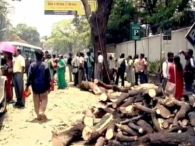 Video : बेंगलुरु : सड़क भी चौड़ी होगी, पेड़ भी नहीं कटेंगे...