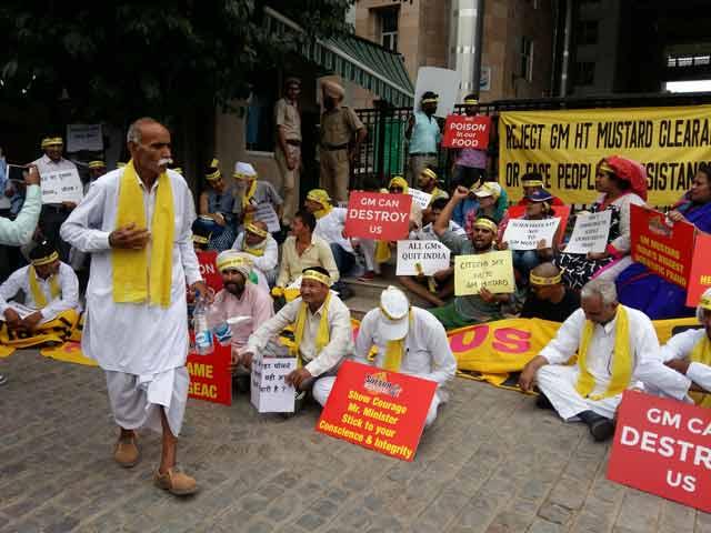 Video : जीएम सरसों को मंज़ूरी का विरोध...