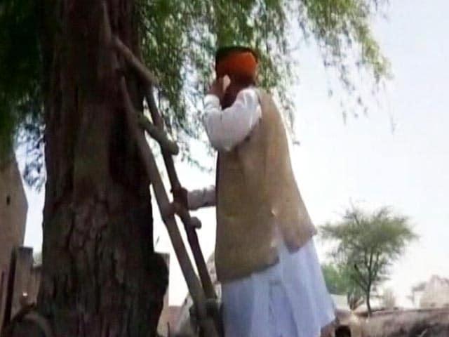 Videos : सिग्नल नहीं मिला तो पेड़ पर चढ़ गए मंत्री अर्जुन मेघवाल