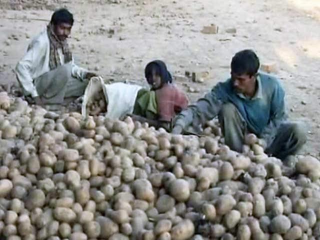 Videos : यूपी में किसानों से आलू खरीदने की सरकारी योजना हुई फ्लॉप