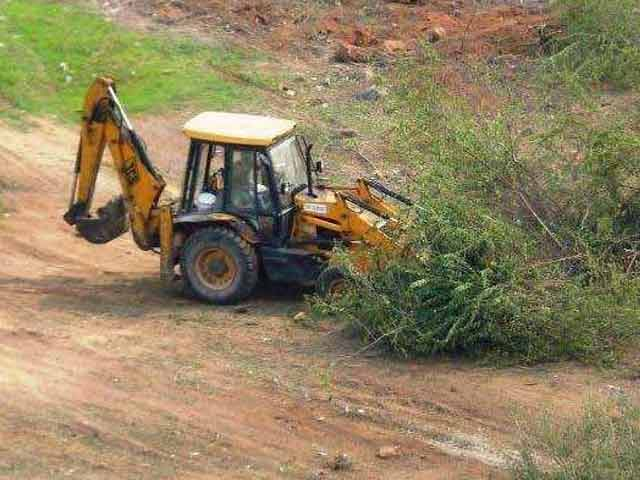 Video : Bulldozers Raze Thousands Of Trees In Haryana, Activists Cry Foul