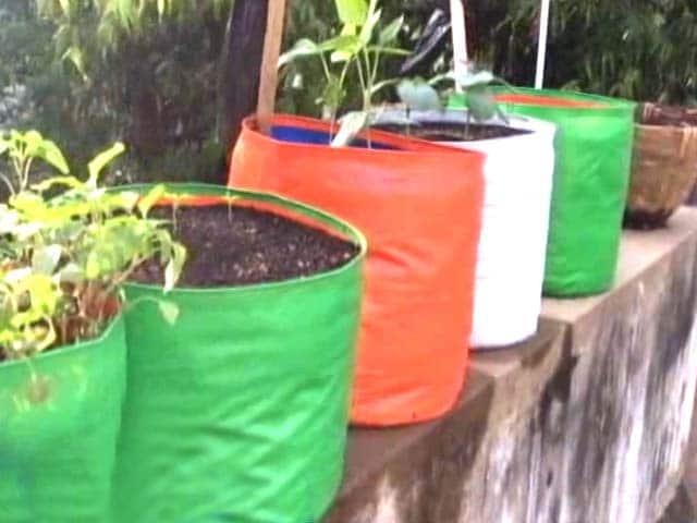 Video : Citizens Voice: Chennai Citizens Take Up Farming