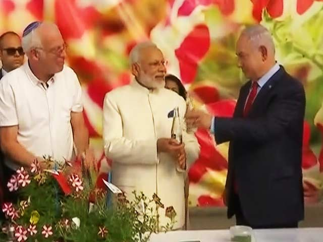 Video : Shalom 'Namo'ste: PM Modi's Big Welcome In Israel
