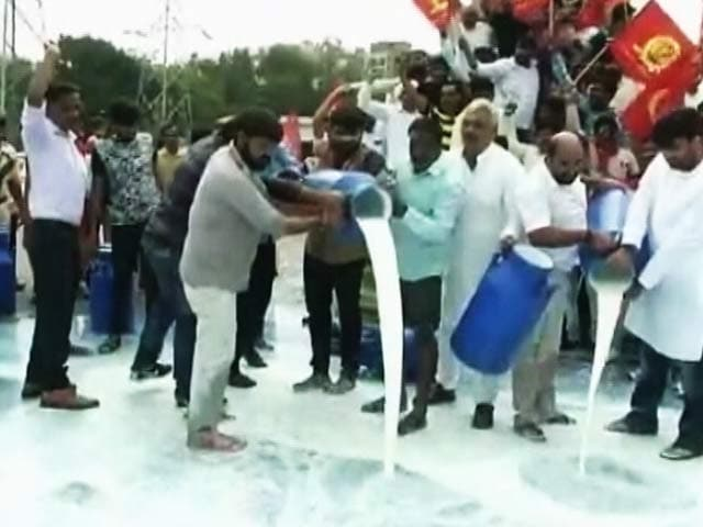 Video : Gujarat Farmers Protest Over Loan Waiver, Spill Milk On Road