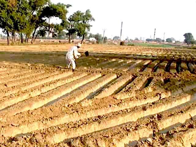 Video : किसानों की खुदकुशी पर सुप्रीम कोर्ट ने केंद्र को नसीहत दी