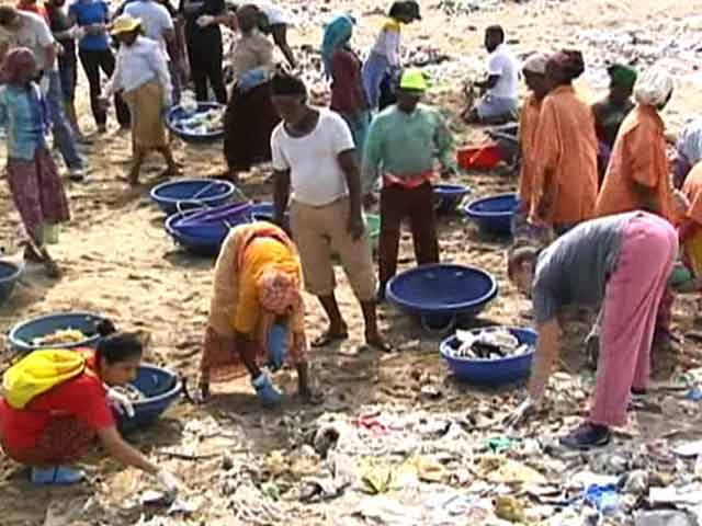 Video : Mumbai's Vanishing Beaches