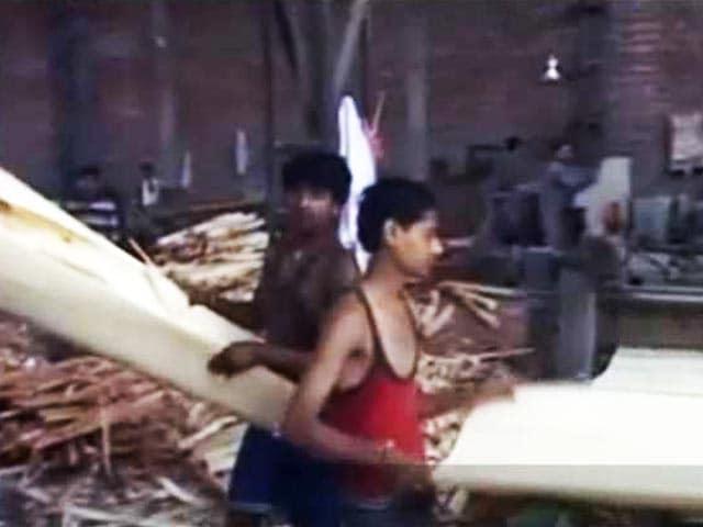 Videos : प्लाईवुड बाज़ार पर जीएसटी की मार