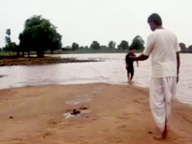 Video : बाढ़ ने किसानों की कमर तोड़ी