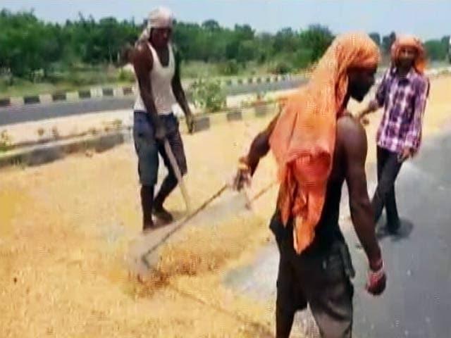 Video : बिहार में बाढ़ से घरों और गोदामों में रखा सैकड़ों टन अनाज बर्बाद