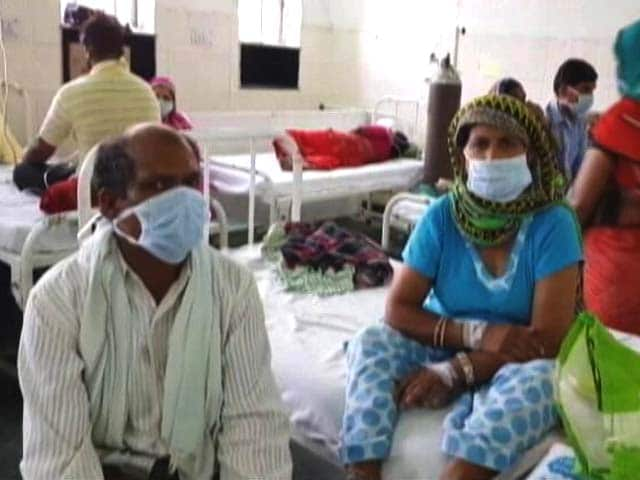 Video : Swine Flu Cases On The Rise In Rajasthan, New Strain Of Virus Detected