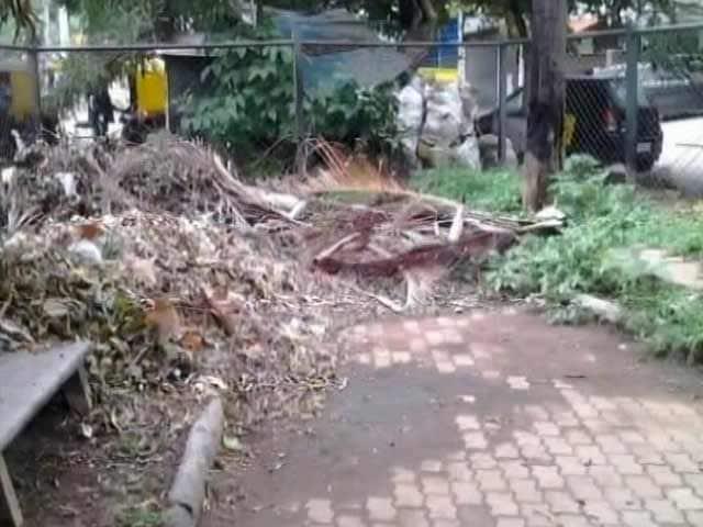 "Video : ""Garden City"" Bengaluru Needs More, And Better, Parks"