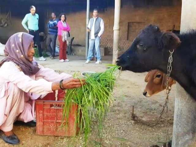 Videos : गोरक्षा के नाम पर कथित पशु तस्करों के साथ मुठभेड़ के मामले बढ़े