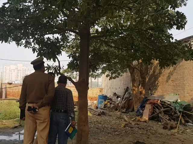 Video : Teen Sisters Found Hanging From Tree Outside Home, Noida Village Shocked