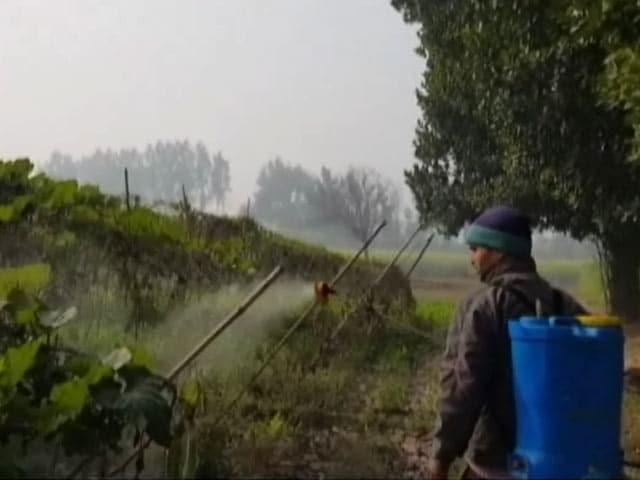 Videos : जैविक खेती ने बदल दी किसानों की किस्मत