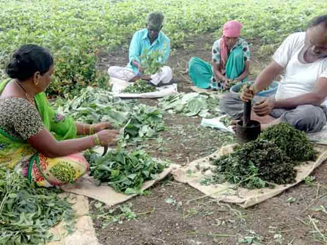 Video : Risk-Taking Entrepreneurs Help Farmers Switch To Organic Cultivation