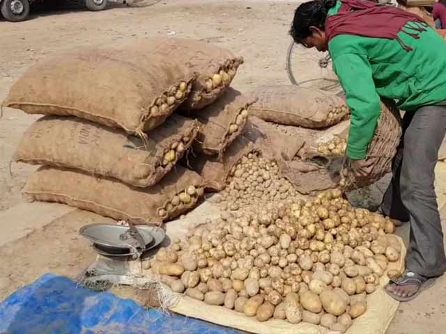 Video : Why UP's Potato Farmers Are Not Looking Forward To Union Budget