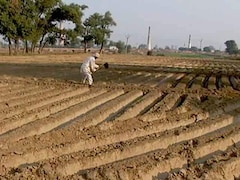 Video: Agriculture Credit Target For Financial Year '19 Up 10 Per Cent To Rs. 11 Lakh Crore