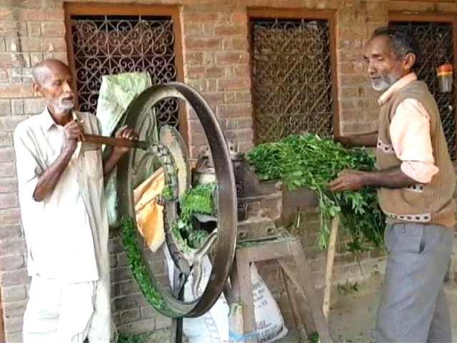 Videos : बैंक कर्ज से जूझते छोटे किसान