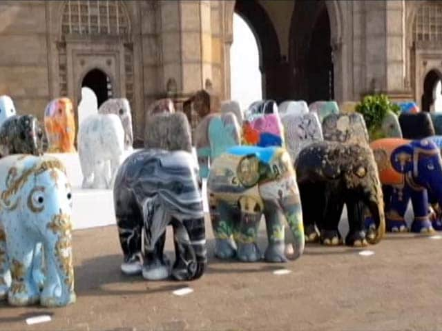 Video : A Hit In UK, Elephant Parade In India To Raise Animal Conservation Funds