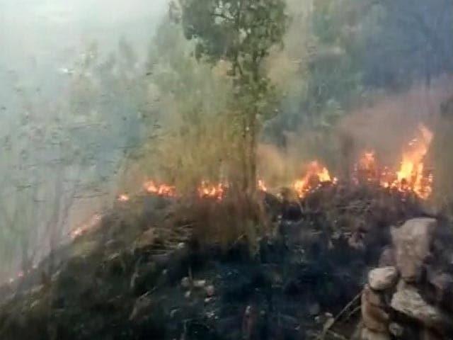 Video : Nine Trekkers Dead In Massive Forest Fire In Tamil Nadu, 30 Rescued