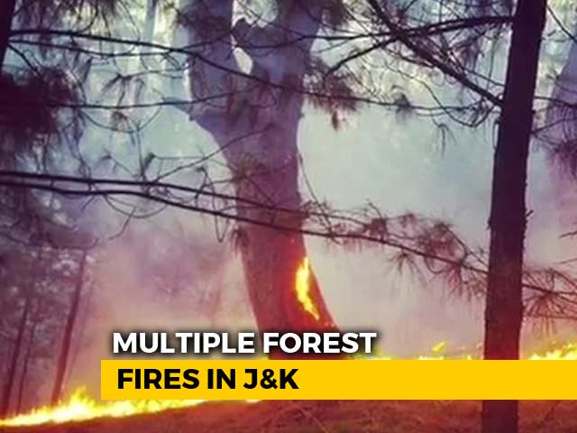 Video : Massive Forest Fires In 4 Districts Of Jammu And Kashmir