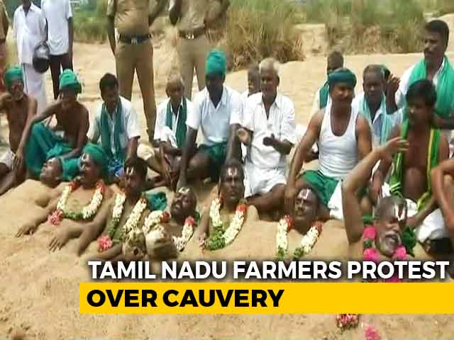 Video : For Cauvery Board, Tamil Nadu Farmers Partially Bury Themselves In Sand
