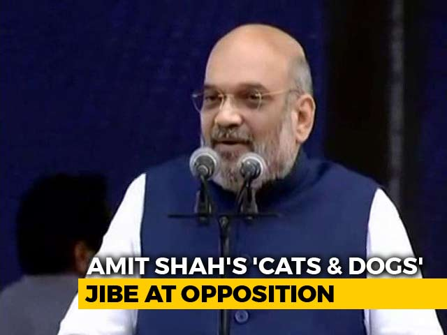 "Video : ""Cats And Dogs Uniting Against 'Modi Flood'"": Amit Shah Mocks Opposition"