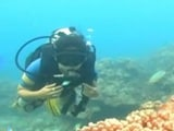 Video: In the Andaman Islands
