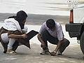 Video: छुपा रुस्तम : लोगों से खुलवाया पंचर टायर