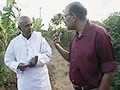 Video: Walk The Talk: H D Deve Gowda (Aired: March 2009)