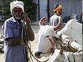 Video: स्पेशल रिपोर्ट : किसानों की आत्महत्या क्यों...